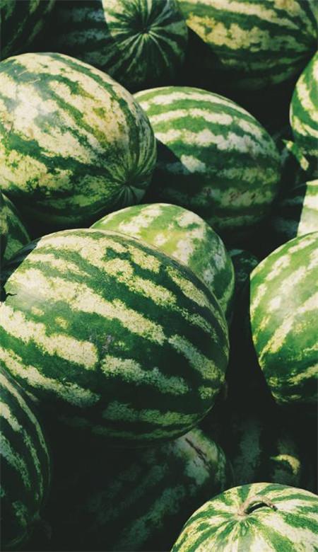 凉爽夏日水果手机壁纸清新 好看的草莓西瓜柠檬蓝莓壁纸图片